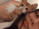 Annesi ölen,1 aylık yavru tekir kedimize acil yuva:(